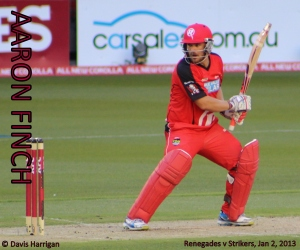 Aaron Finch during BBL|02 (photo: mine)