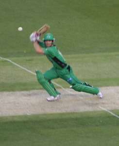 Matthew Wade v Melbourne Renegades, Dec 7, 2012 (photo mine)
