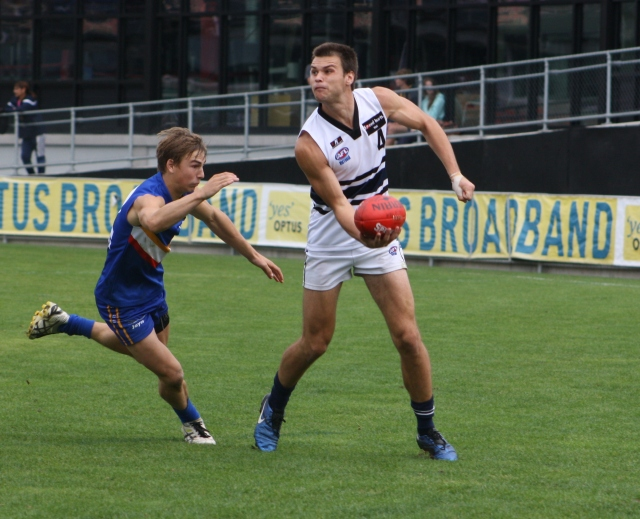 Eastern Ranges v Northern Knights, Apr 1, 2012 (photo mine)