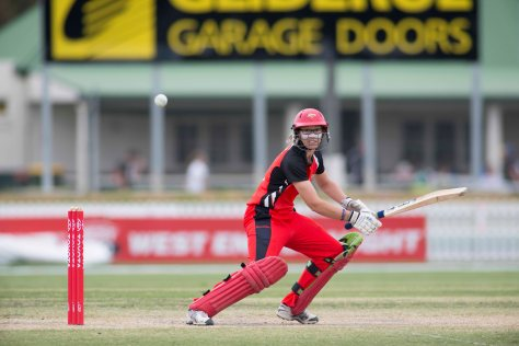 Lauren Ebsary in action for the Scorpions (photo: Cricket SA)