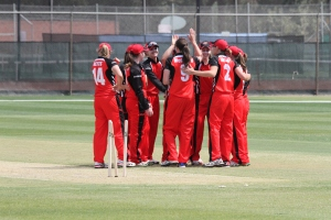 The Scorpions celebrate their win on a sombre day for cricket (photo: Davis Harrigan)