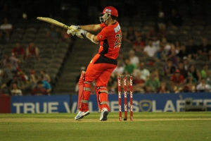 Tom Cooper of the Melbourne Renegades (photo: Davis Harrigan)